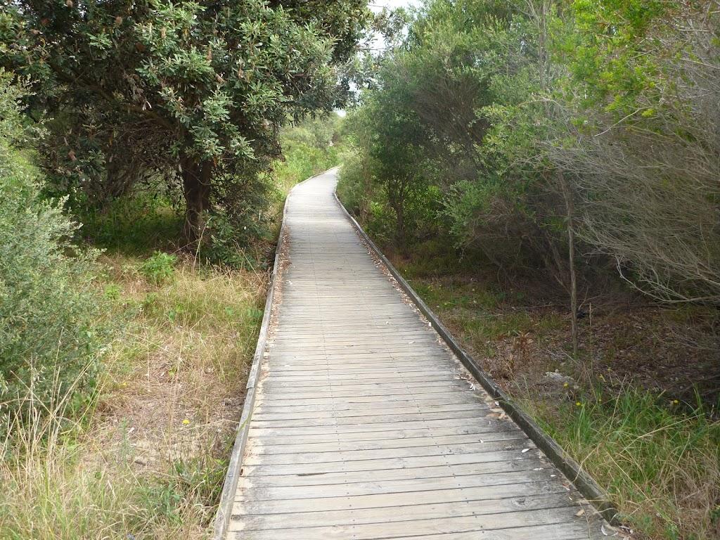 Timbered boardwalk on the Owens Walkway near Webb Park