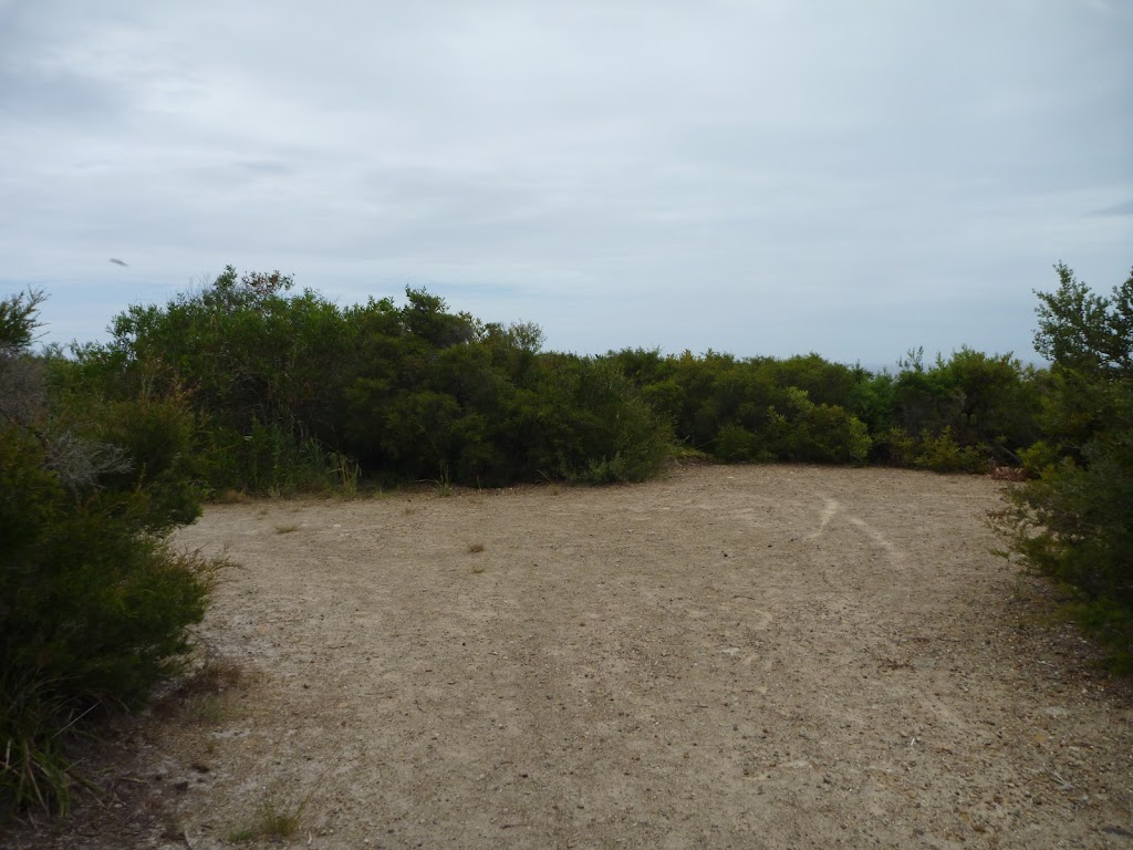 Wide trail near the Awabakal Viewpoint in the Awabakal Nature Reserve (391796)