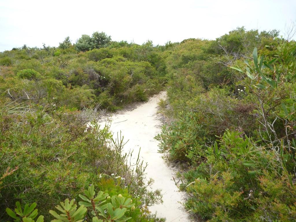 Sandy track on the Awabakal Coastal Walk