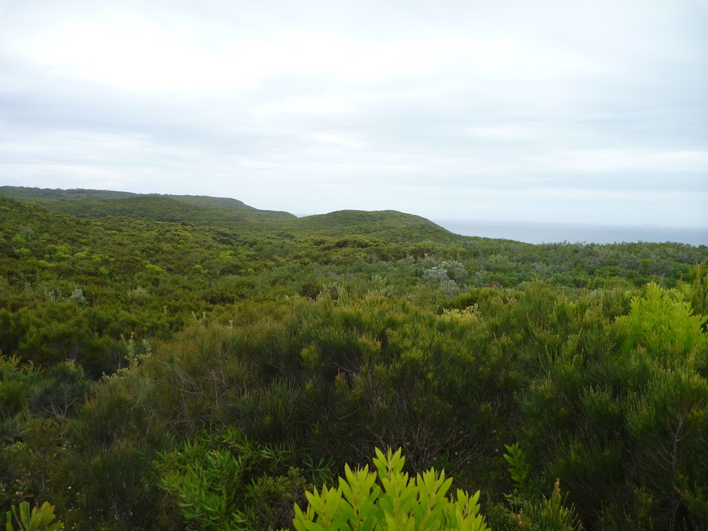 Views on the Awabakal Coastal Walk in the Awabakal Nature Reserve