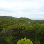 Views on the Awabakal Coastal Walk in the Awabakal Nature Reserve (392237)