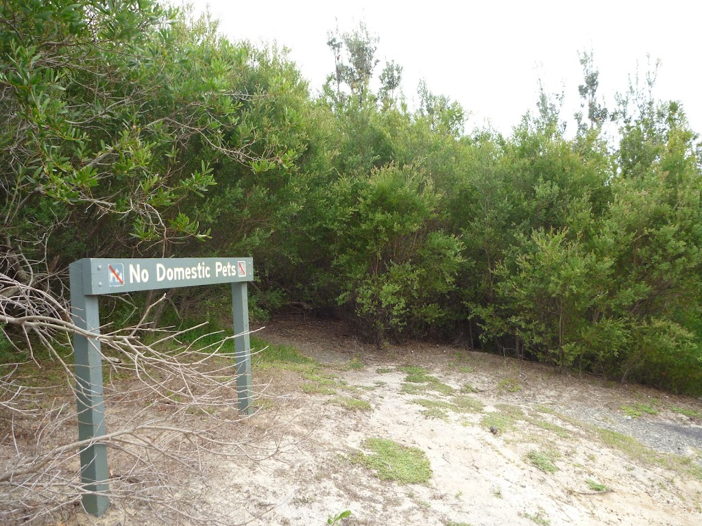 Sign and track into the Awabakal Nature Reserve