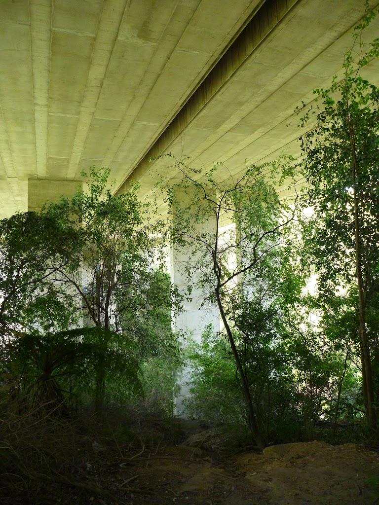 Walking under De Burghs Bridge