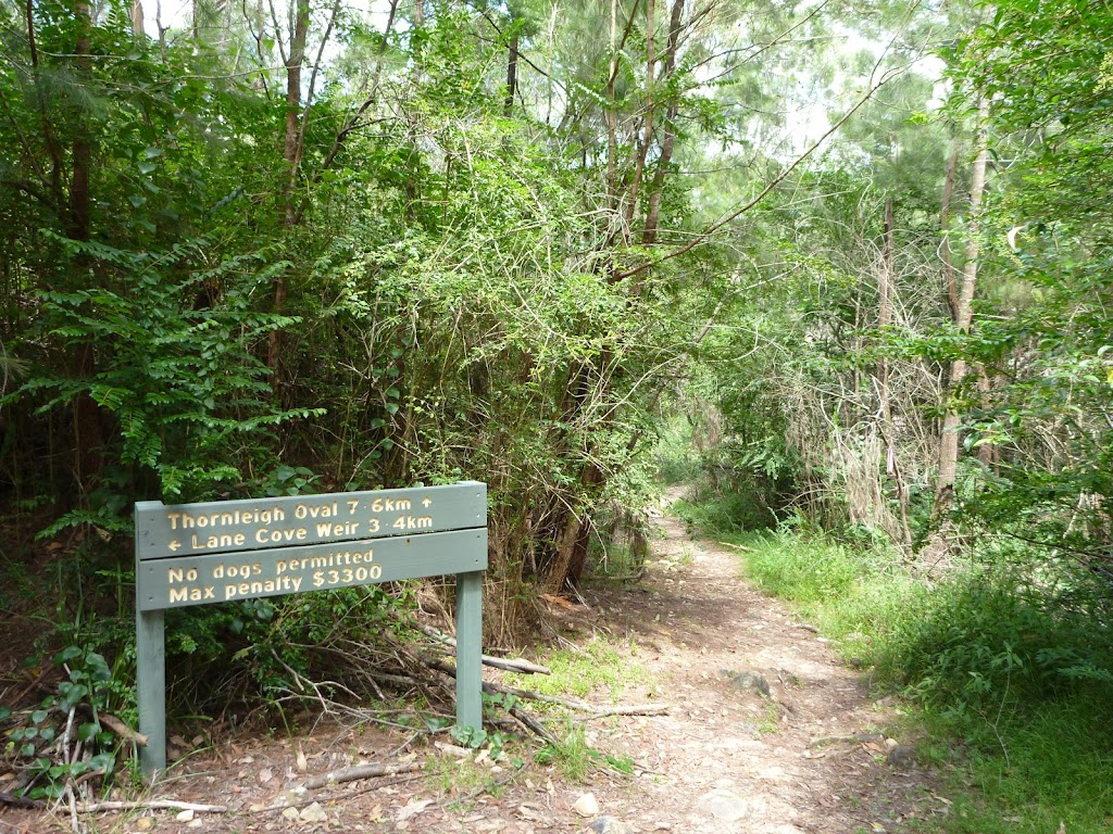Well signposted section in Lane Cove NP