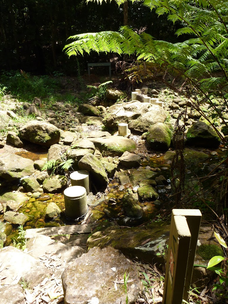 Stepping stones over the upper Lane Cove River