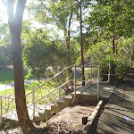 Concrete steps in Carnley Avenue Reserve in Blackbutt Reserve (399334)