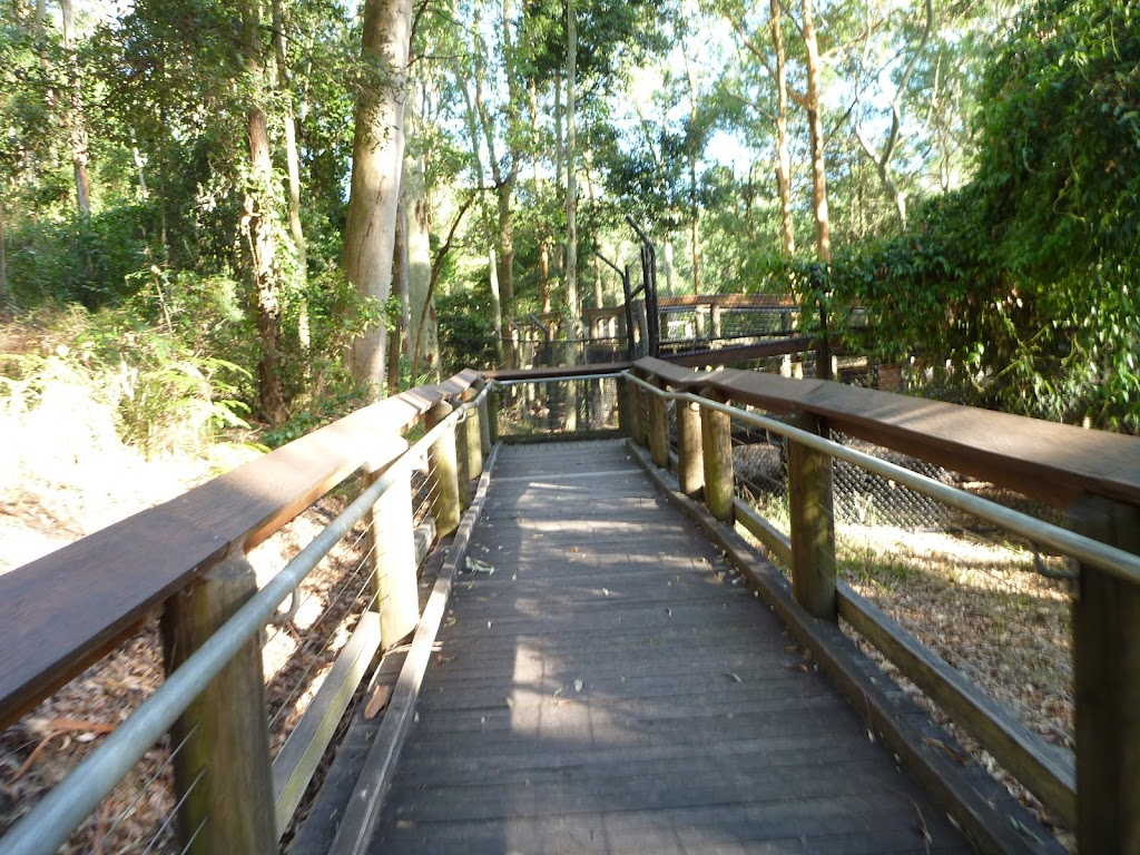 Boardwalk at Blackbutt Wildlife Exhibits