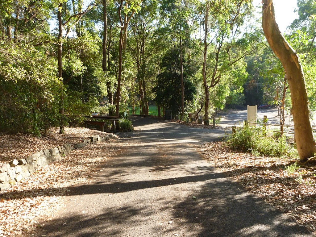 Close to an intersection at the Carnley Reserve car park and Wildlife Exhibits entrance in Blackbutt Reserve