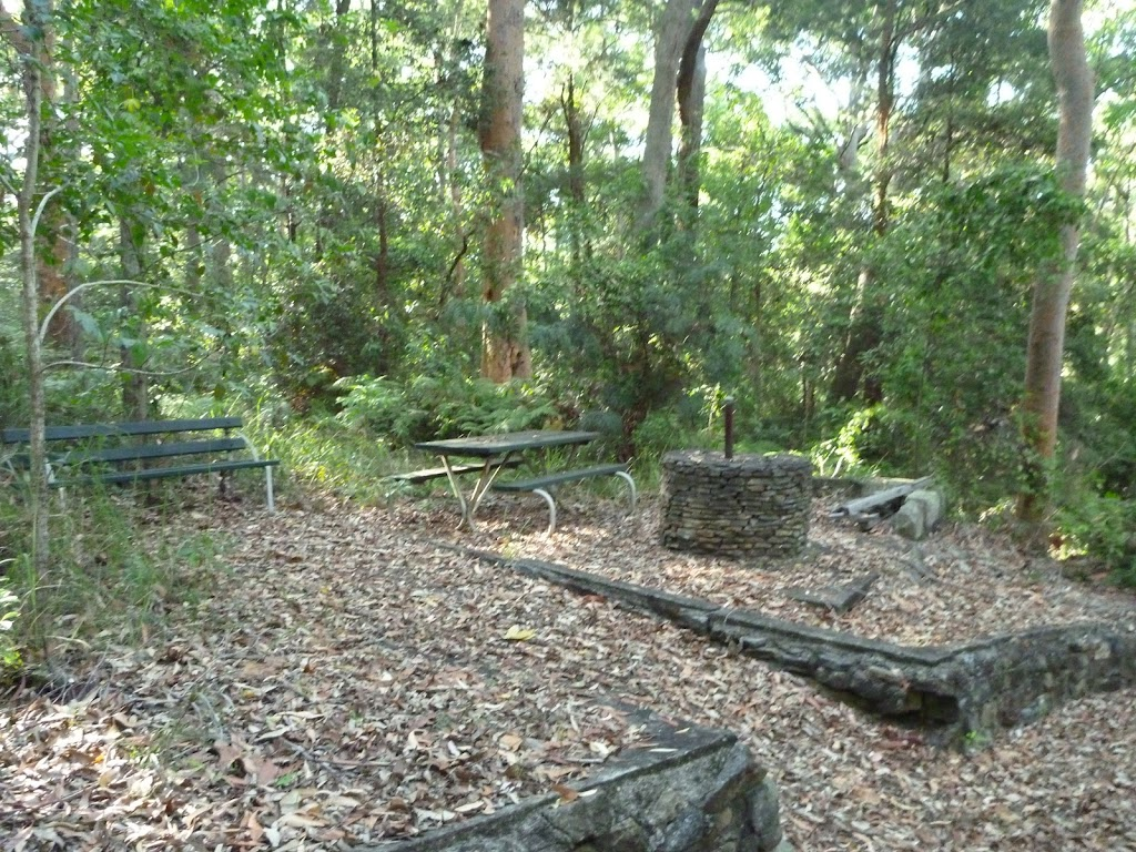 Old picnic area in the Blackbutt Reserve