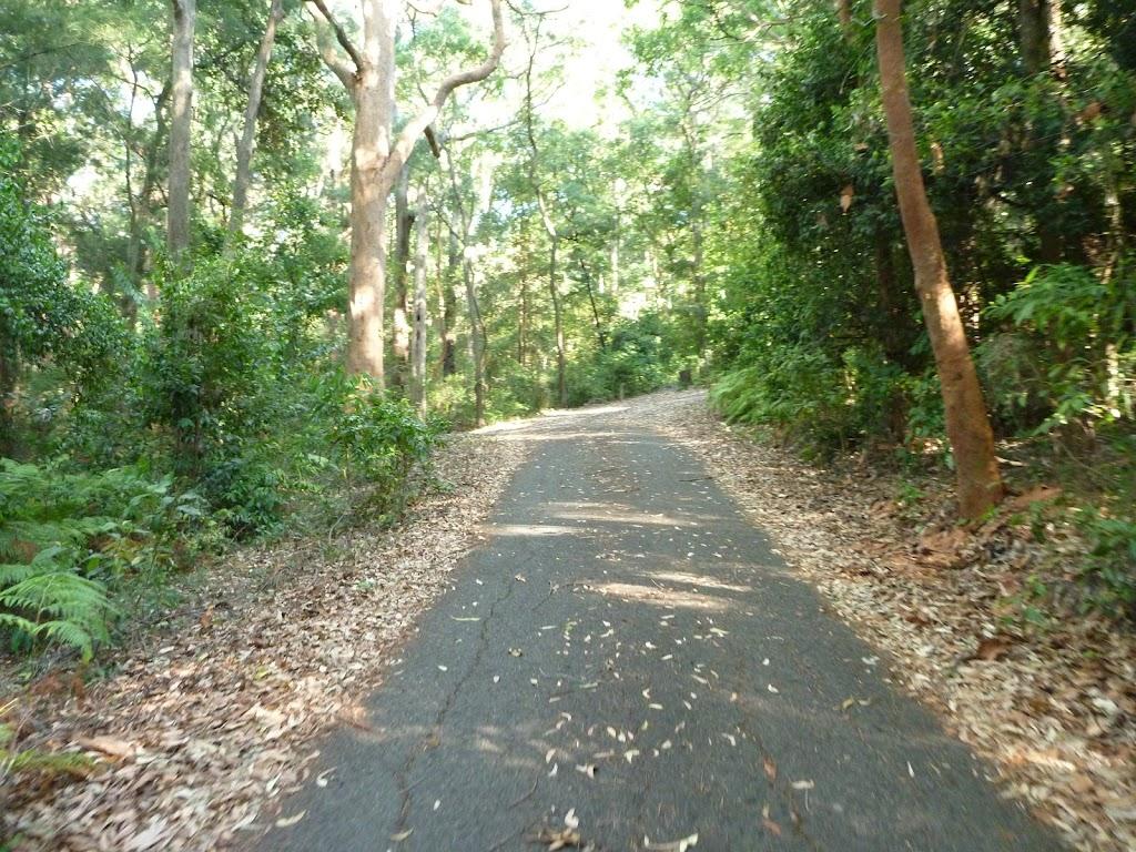 Trail going uphill in Blackbutt Reserve