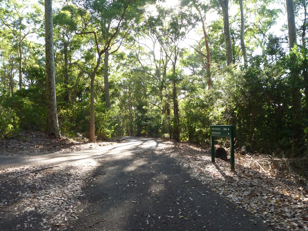 Intersection and sign in the Blackbutt Reserve