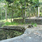 A small picnic area at the Blackbutt Reserve (399622)