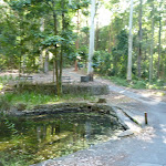 A small pond and picnic area at the Blackbutt Reserve (399625)