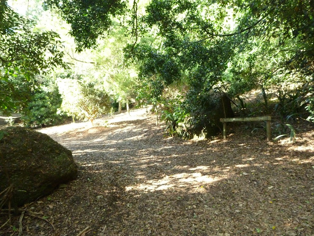 Sign and trail at the Rain Forest Picnic Area in the Blackbutt Reserve (399730)