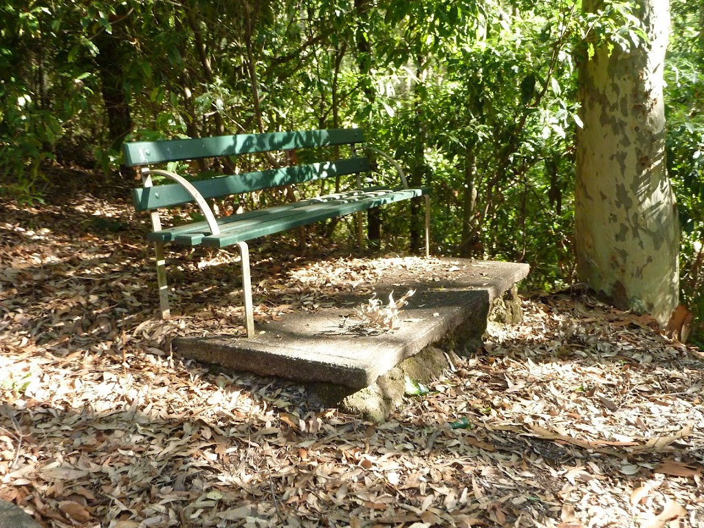 Seat next to Lookout Road in Blackbutt Reserve