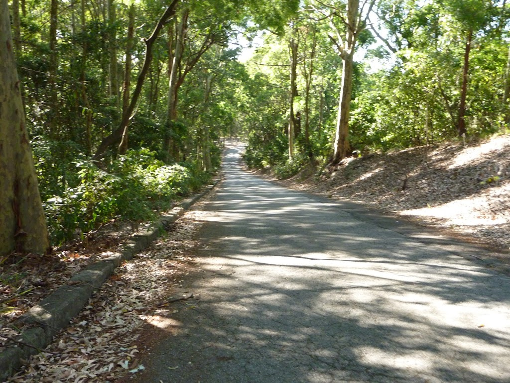 Road down to the end of Lookout Road in Blackbutt Reserve