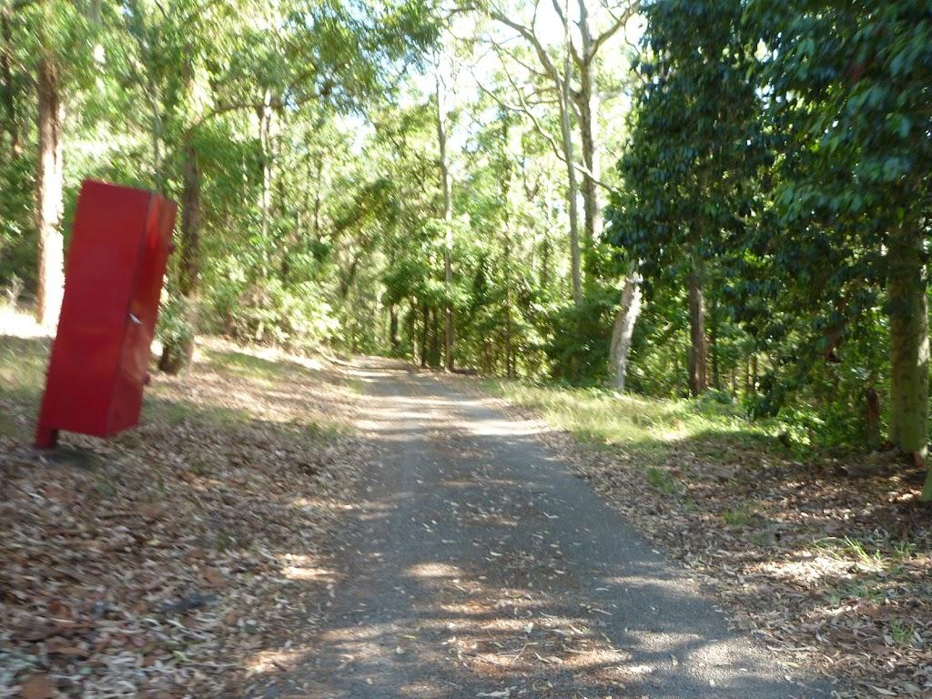 Trail on the Main Ridge Walk in Blackbutt Reserve