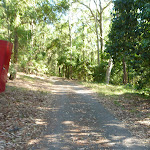 Trail on the Main Ridge Walk in Blackbutt Reserve (399943)