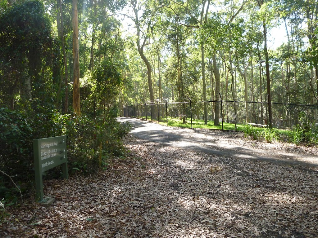 Trail and metal ring fence in Blackbutt Reserve