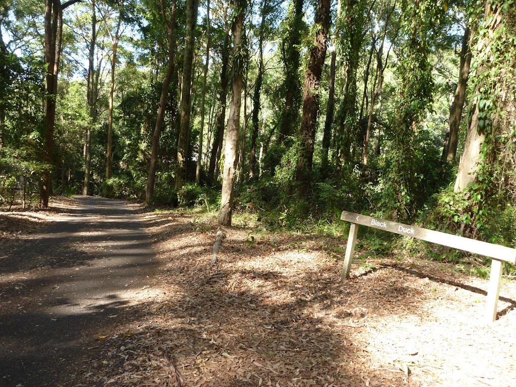 Sign and trail going downhill, close to Carnley Reserve in the Blackbutt Reserve