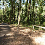 Sign and trail going downhill close to Carnley Reserve in the Blackbutt Reserve (400087)