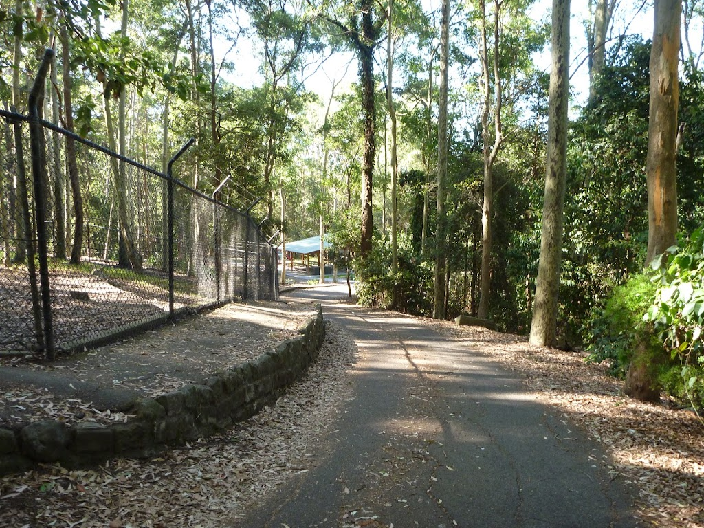Trail beside metal ring fence down towards Carnley Reserve in the Blackbutt Reserve (400093)