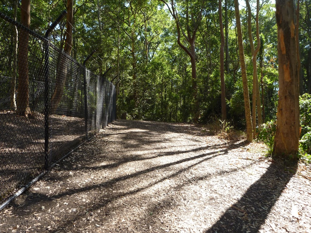 Metal fence and trail in Blackbutt Reserve