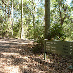 Detailed sign on the Tall Trees walk in Blackbutt Reserve