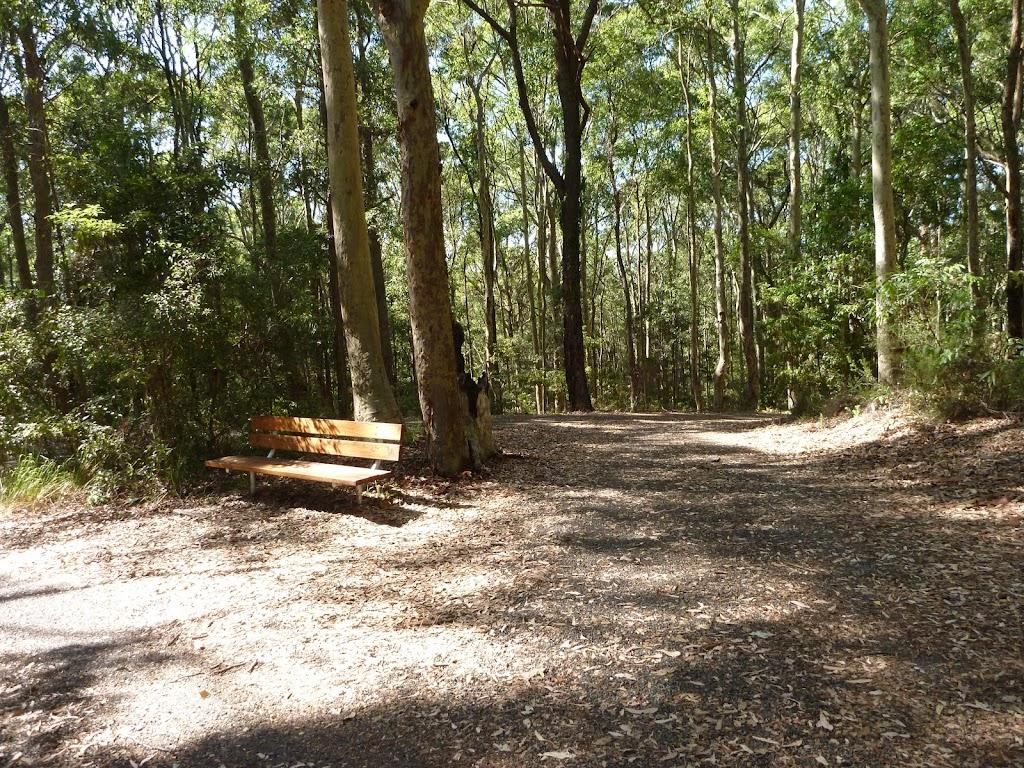 Seat on the Tall Trees walk in Blackbutt Reserve