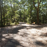 Wide sealed trail in the Blackbutt Reserve