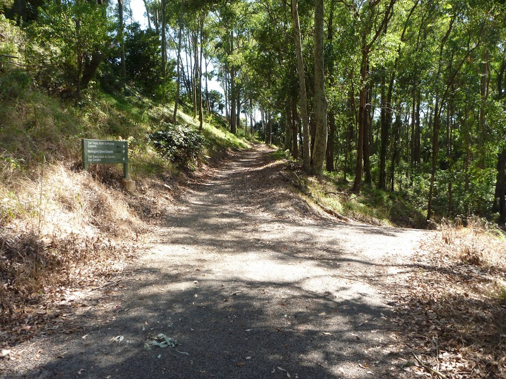 A trail intersection near Lookout Road in Blackbutt Reserve (400411)