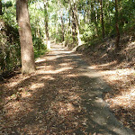 Uphill trail in Blackbutt Reserve