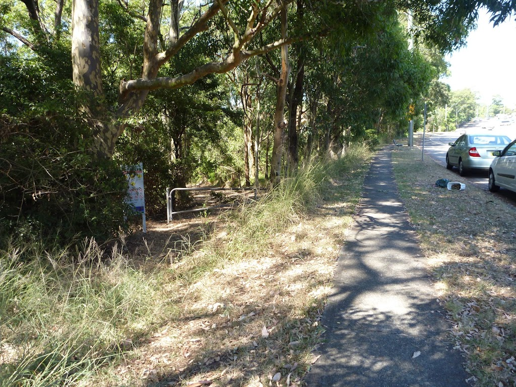Trail into Blackbutt Reserve, and near Lookout Road