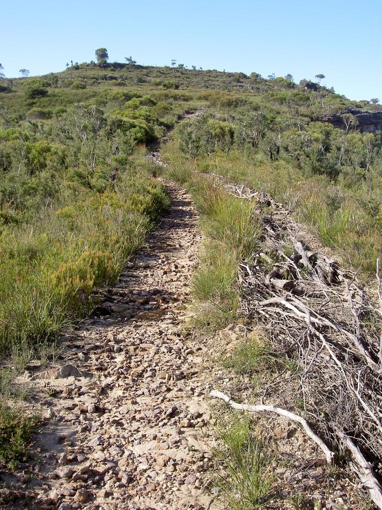 Flat Top Track (40104)