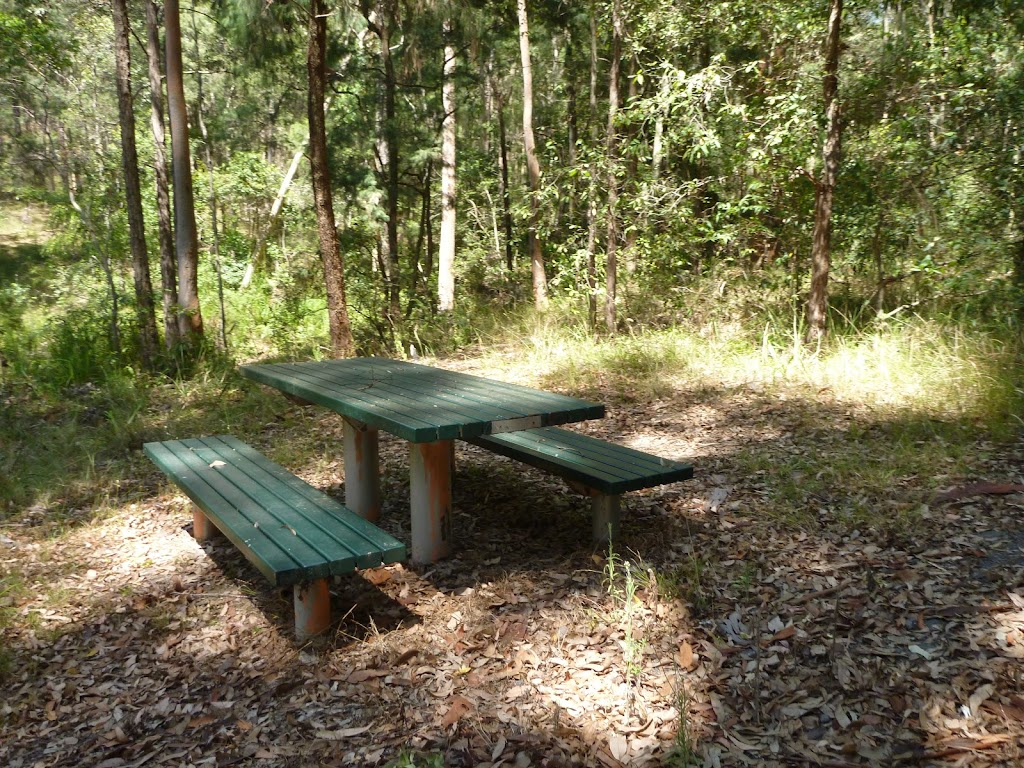 Picnic table at Lily Pond Picnic Area in Blackbutt Reserve
