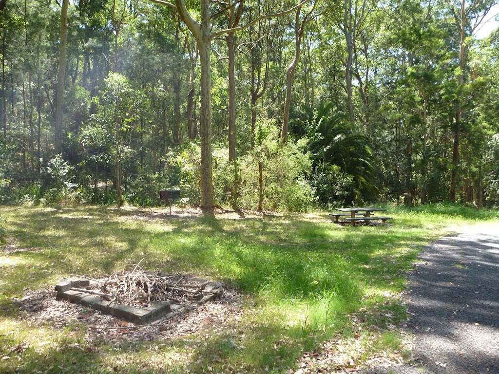 Barbecue and picnic table at Lily Pond Picnic Area in Blackbutt Reserve