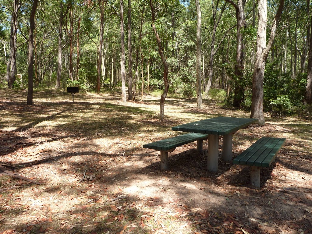 Picnic table at Mahognay Picnic Area in Blackbutt Reserve