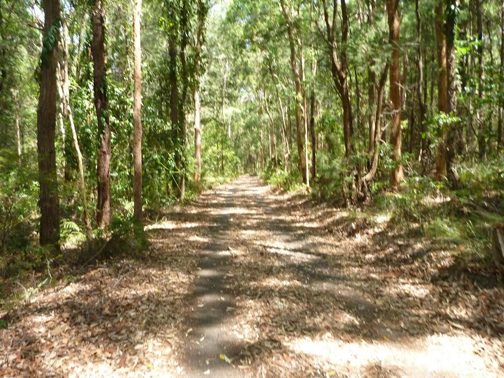 Uphill trail near Richley Reserve in Blackbutt Reserve