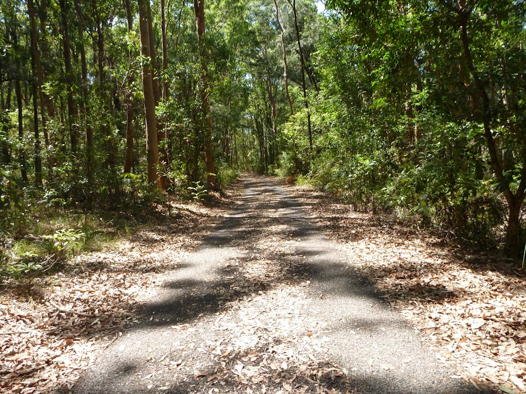 Trail close to Richley Reserve in Blackbutt Reserve