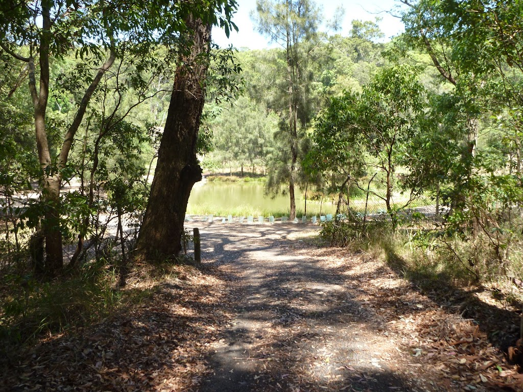 Trail and pond in the distance at Richley Reserve