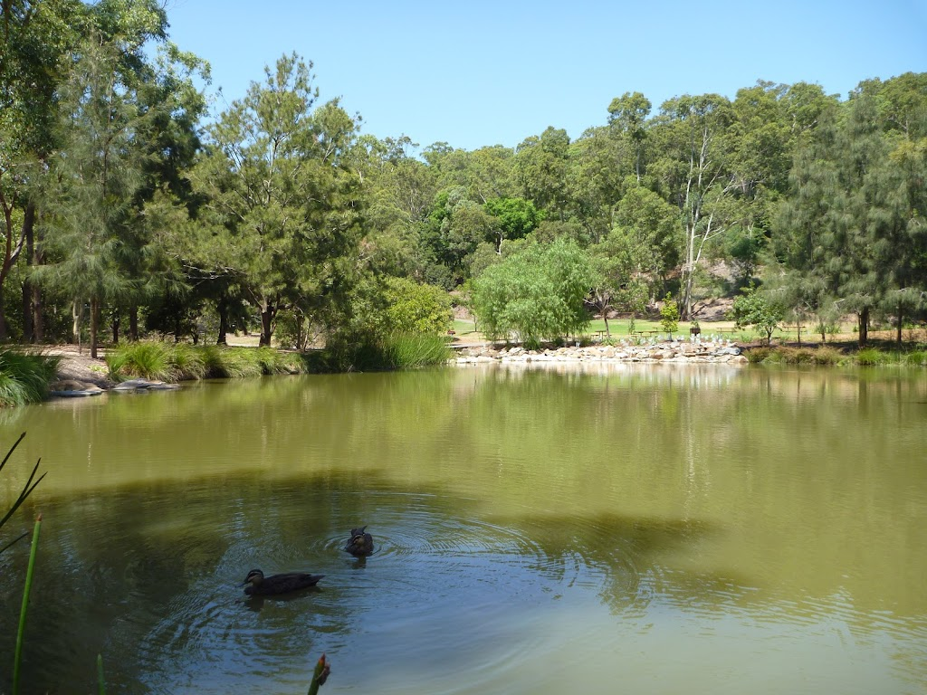 Richley Reserve pond with ducks in Blackbutt Reserve (401506)