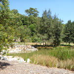 Richley Reserve pond on a sunny day at Blackbutt Reserve