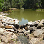 Large pond with outlet at Richley Reserve in Blackbutt Reserve