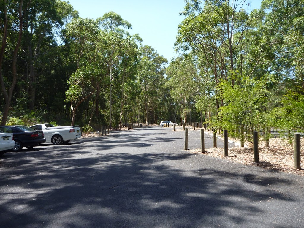 Richley Reserve Car Park Blackbutt Reserve (401614)