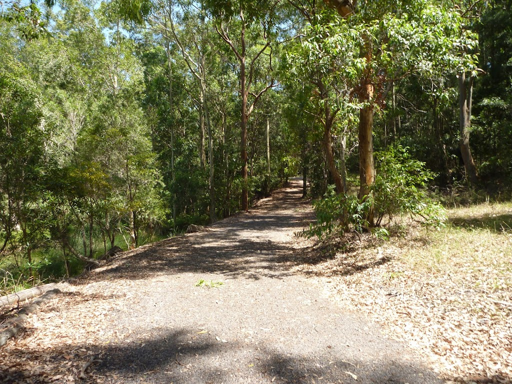 Trail by pond in Richley Reserve in Blackbutt Reserve