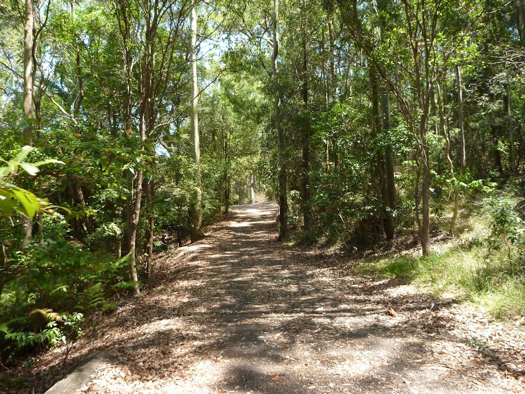 Trail near pond at Richley Reserve