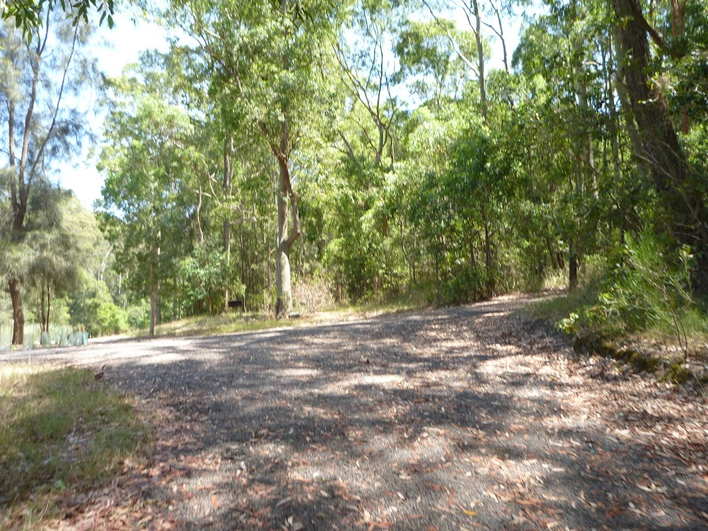 Trail by pond in Richley Reserve in Blackbutt Reserve (401638)