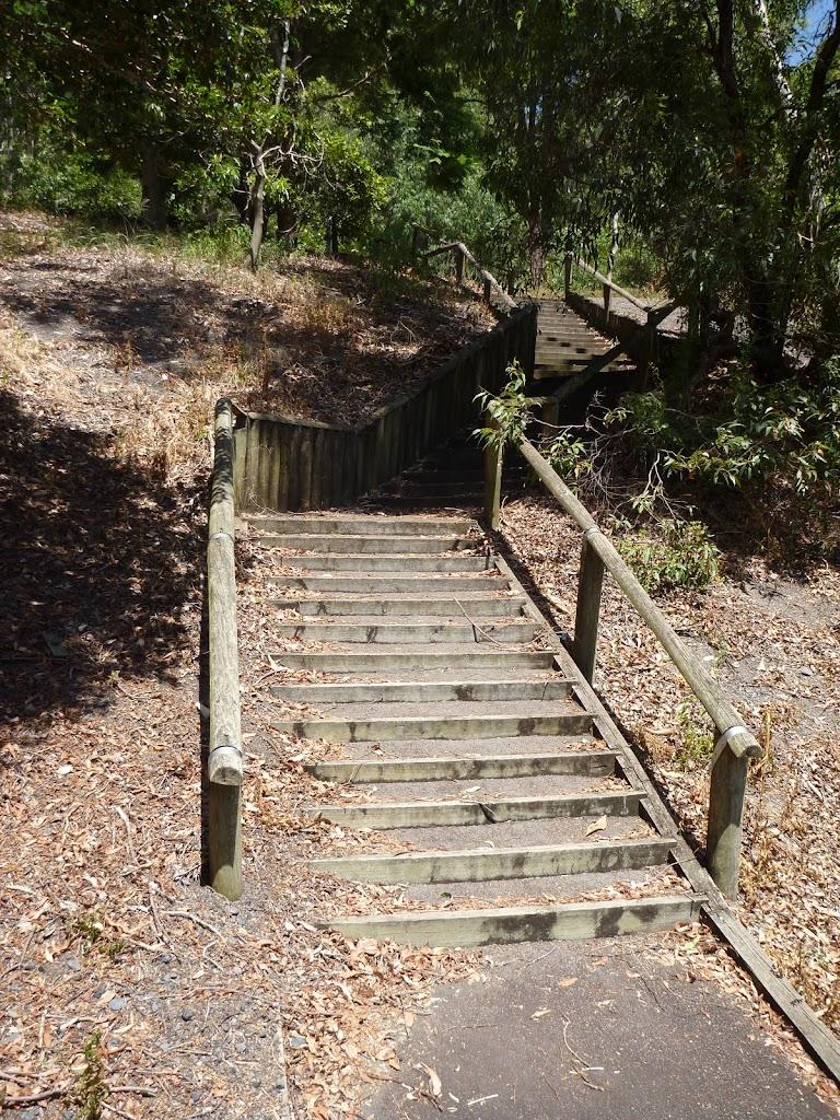 Timber steps in Richley Reserve in Blackbutt Reserve (401653)