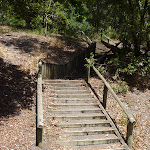 Timber steps in Richley Reserve in Blackbutt Reserve