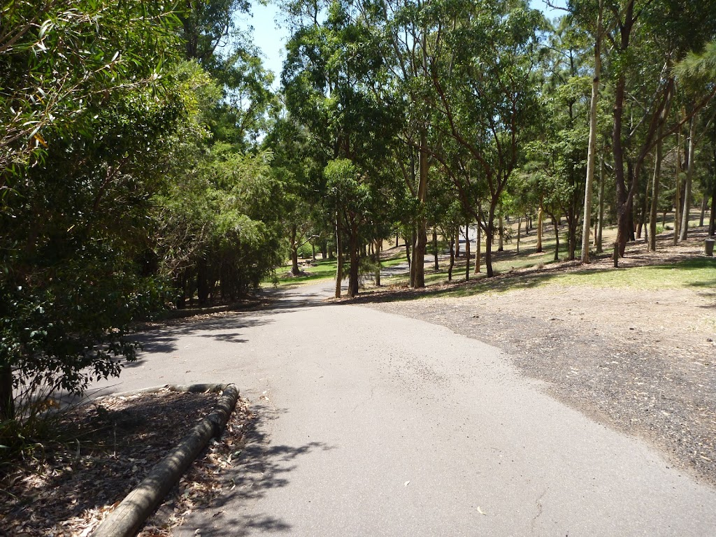 Gently downhill trail at Richley Reserve